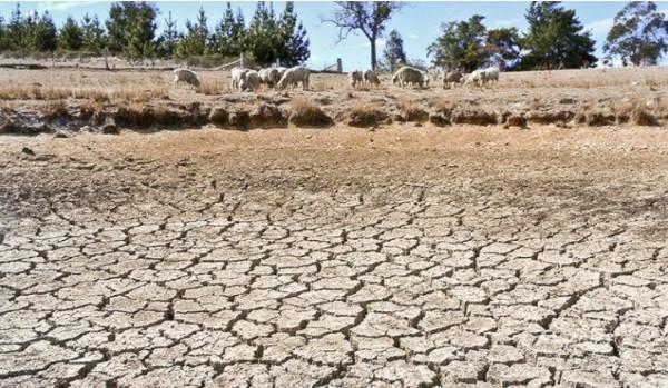 Lục địa Australia có khí hậu khô hạn